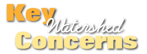 watershed-concerns
